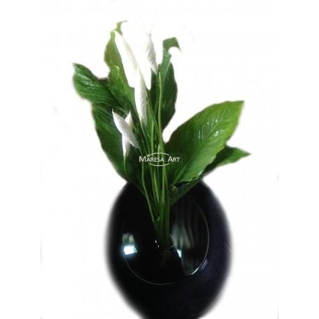 """04 Spathiphyllums de """"Vase"""""""